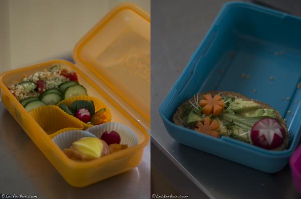 Coole-Lunchbox_packen_09-2016-03-22-07-00.jpg